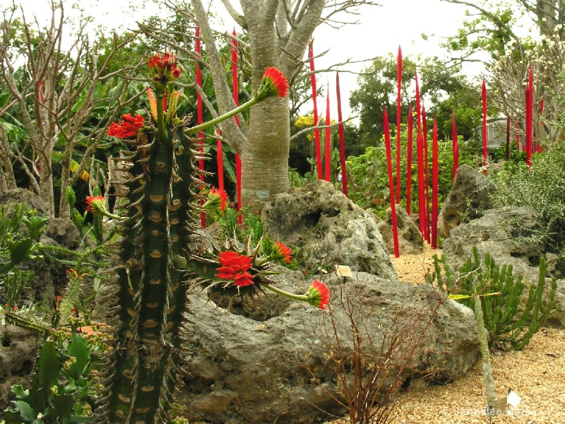 Chihuly at Fairchild, Miami red