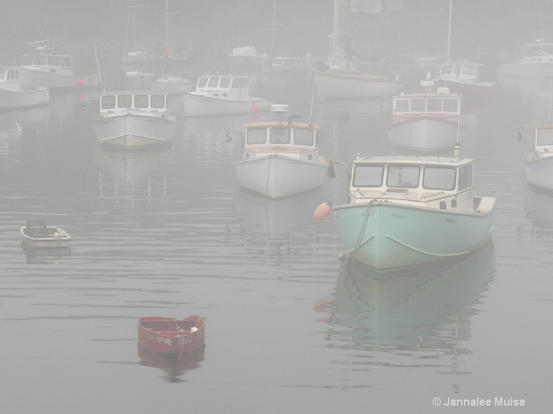 Perkins Cove Fog