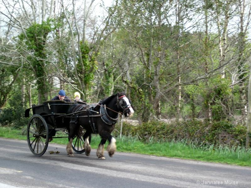 Irish school bus