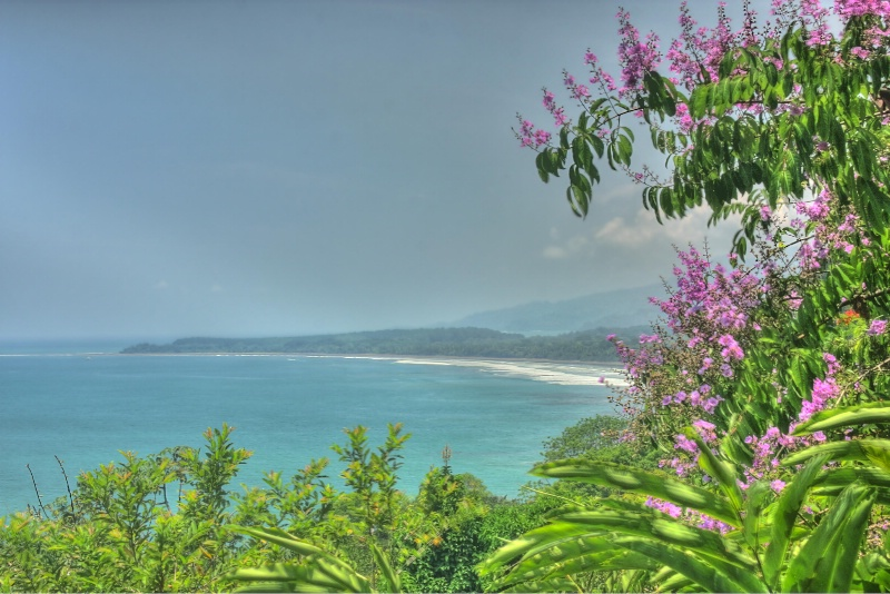 Distant Beach  Point