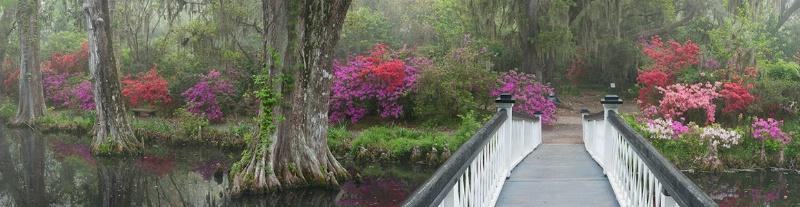 Magnolia Gardens Bridge Pan 1