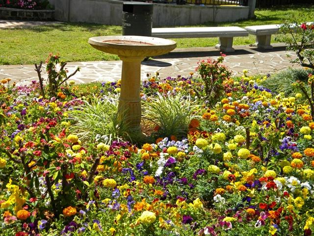 bird bath and flowers