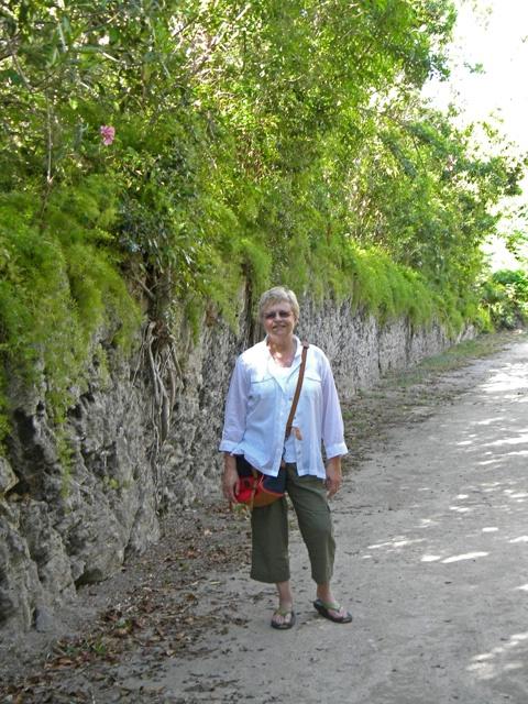 bobi on nature trail 2