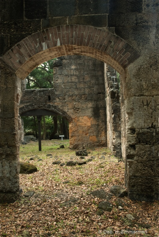 Looking thru the Ruins at Bullow Sugar Plantation