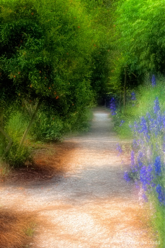 Williamsburg Path