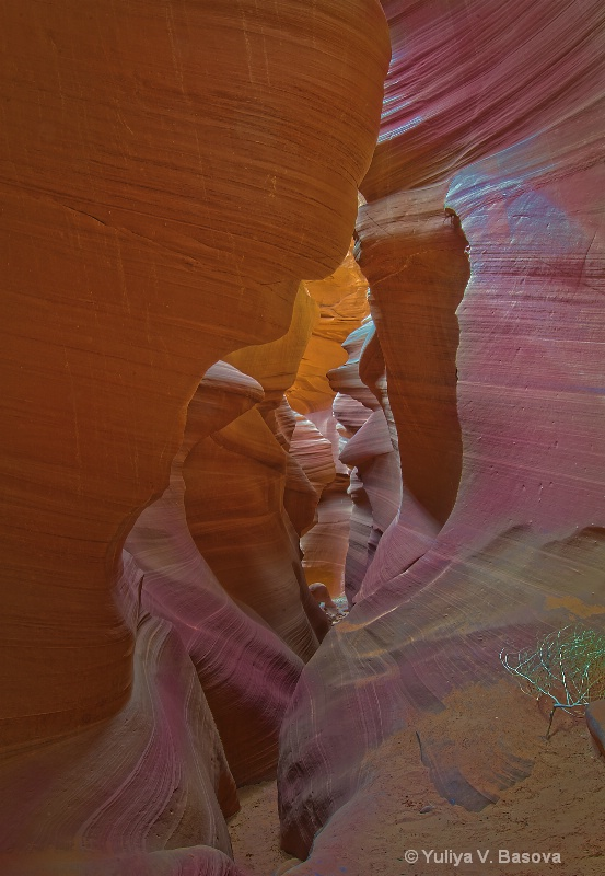 Lower Antelope Canyon, Arizona.