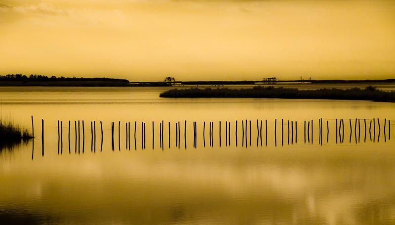 Dawn at Blackwater