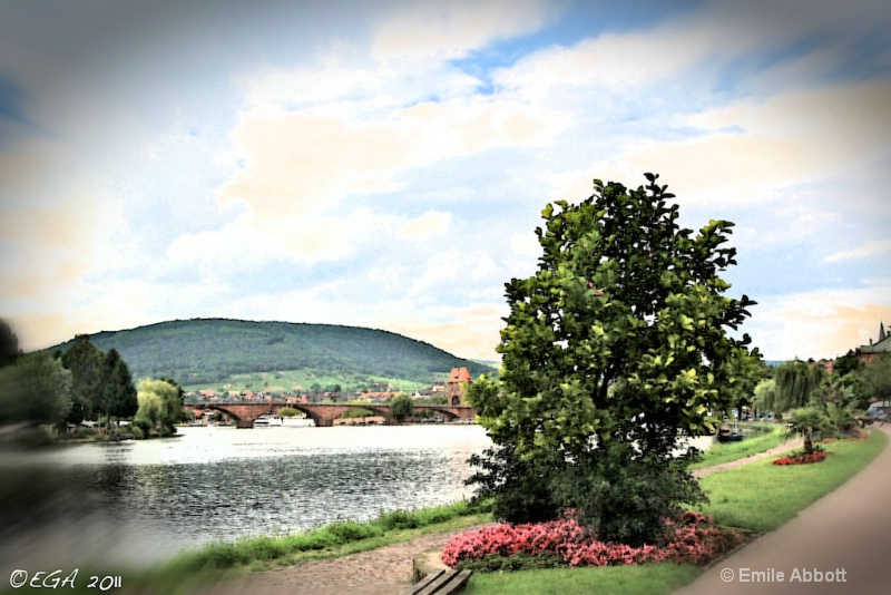 Miltenberg on the Main #3