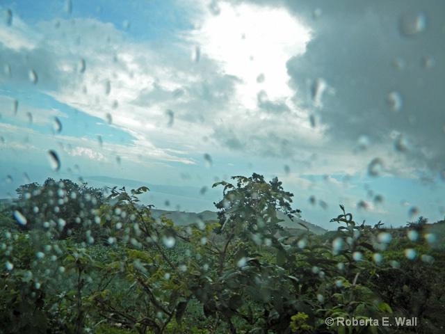 rain traveling from fond batiste