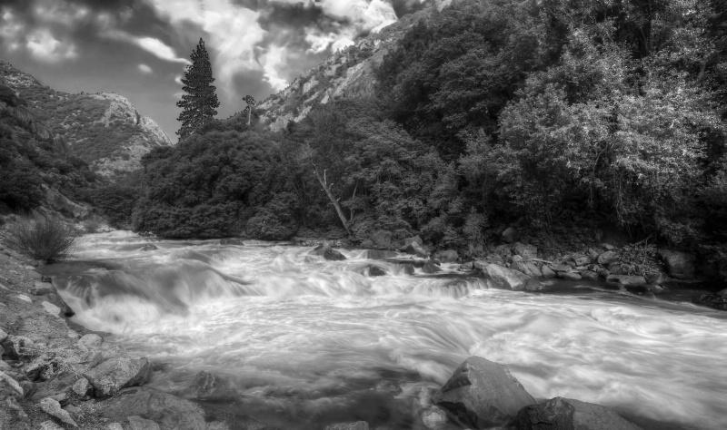 Wild Merced River