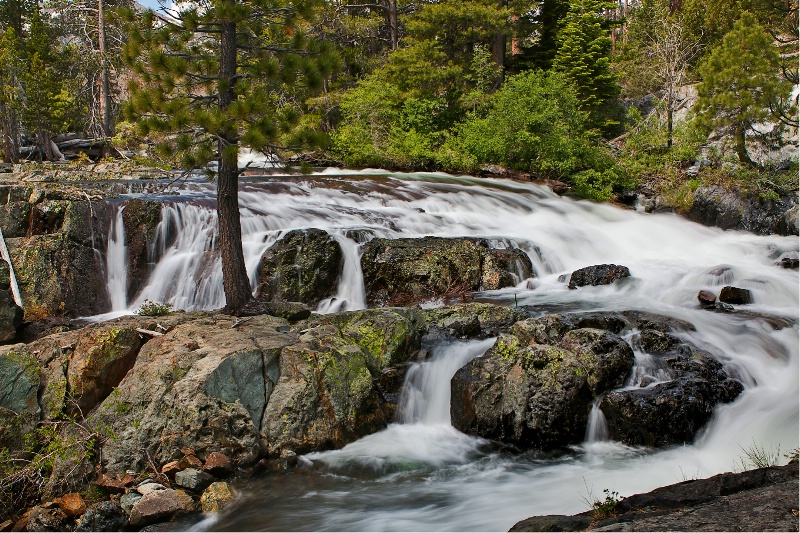 Glen Alpine Creek, Desolation Wilderness, Calif.