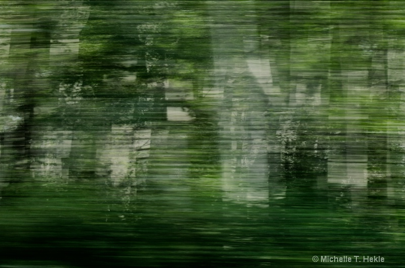 3D drive by trees