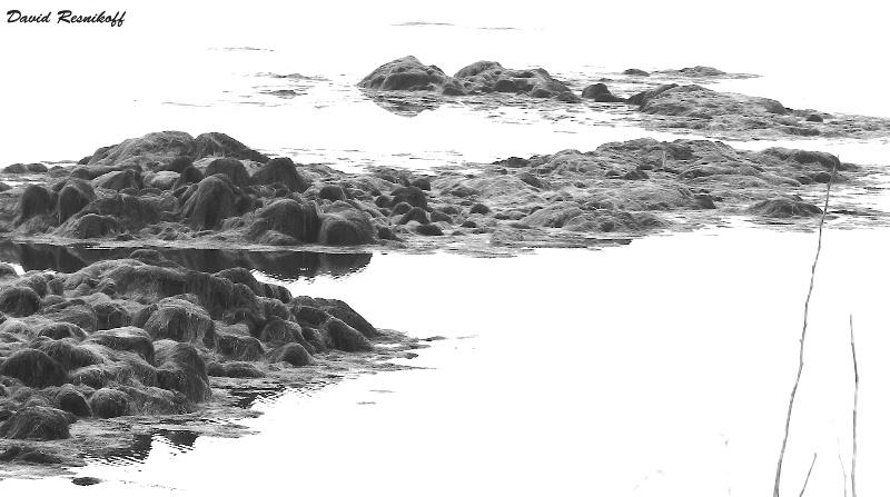 Rocks Snaking Away