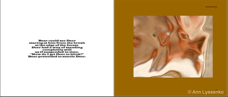#10 Shapeshifting Book