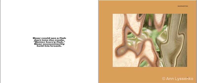 #7 Shapeshifting Book