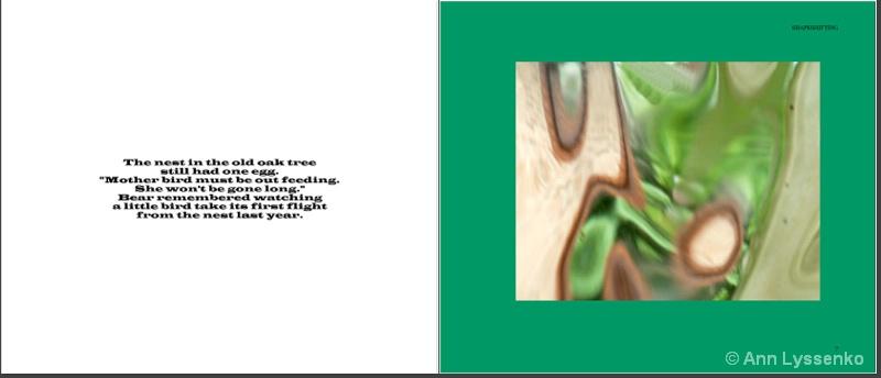 #2 Shapeshifting Book