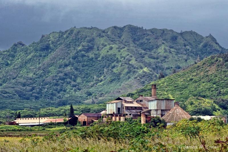 Sugarcane Factory