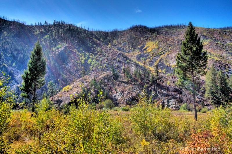 Rock Creek, MT 2