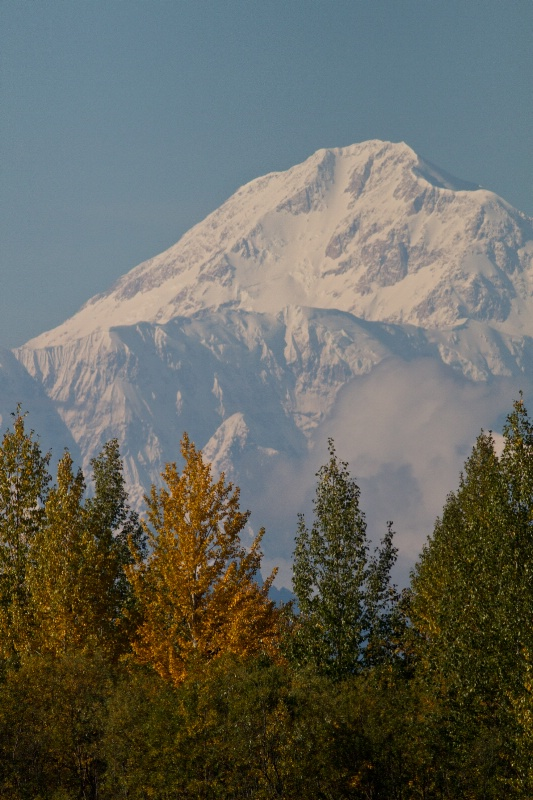 Denali Mt. McKinly) from Susitna River
