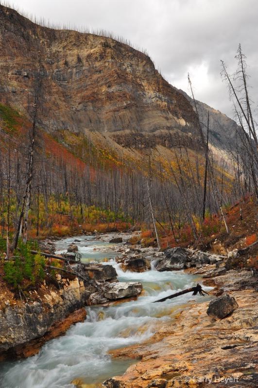 Marble Canyon in Kootenay National Park