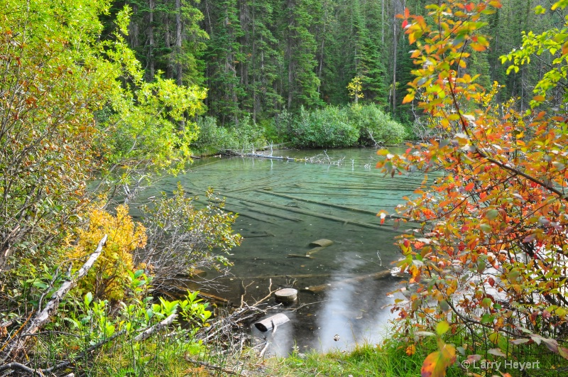 Olive Lake- Kootenay National Park