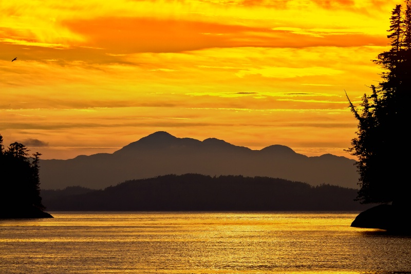 Cameron Cove Sunset