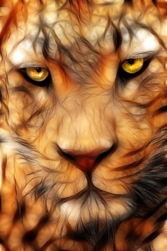 Memphis Leopard -- Fractalius #2