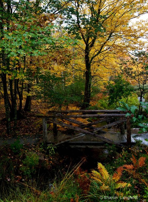 Footbridge - Sieur de Monts