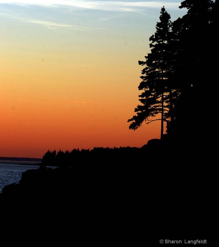 Maine Coast in Silouette
