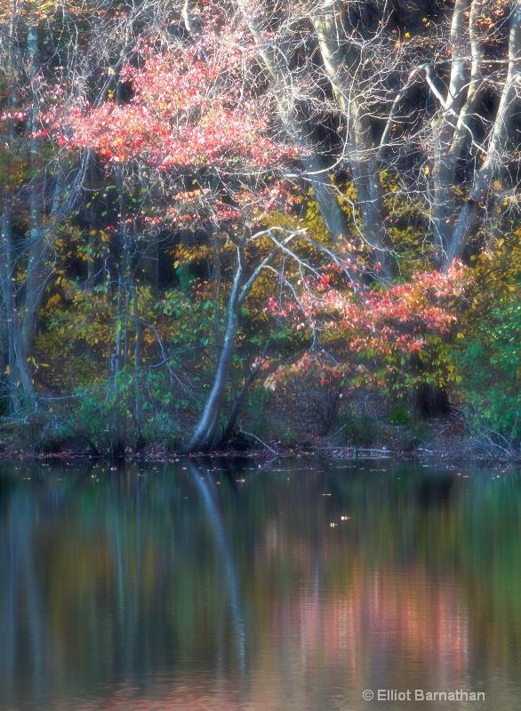 Hidden Lake 27