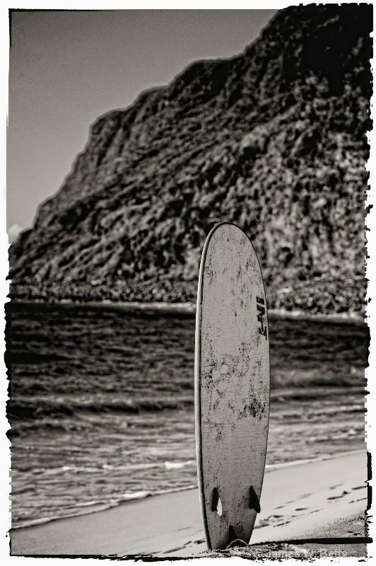 lonley board