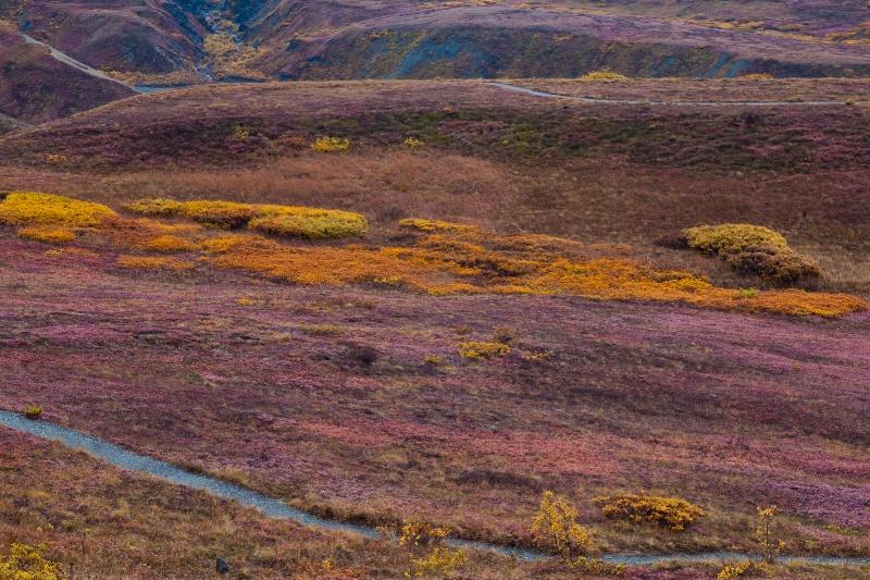 September in Denali