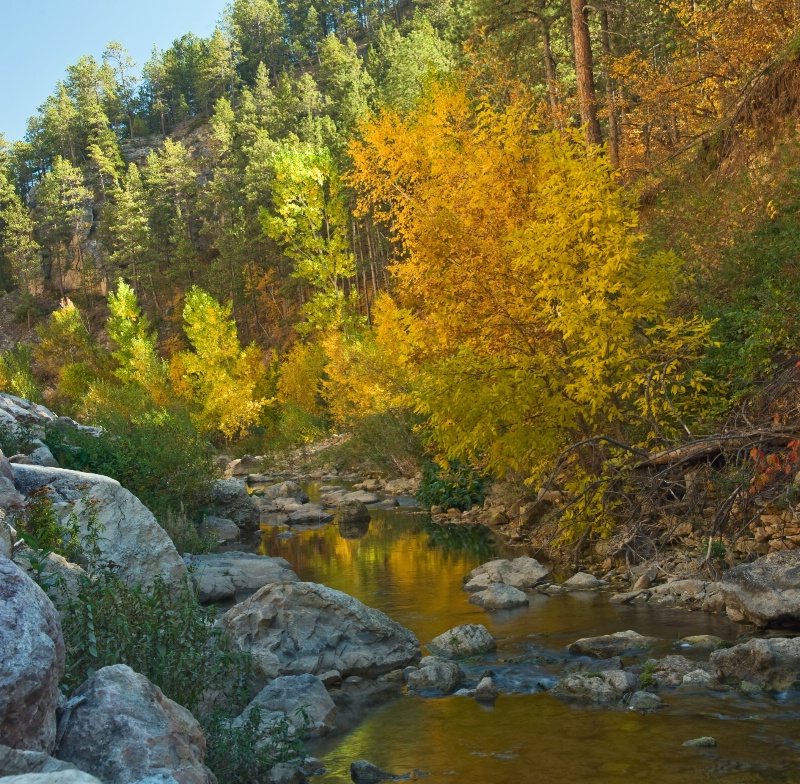 Boulder Canyon gold pano