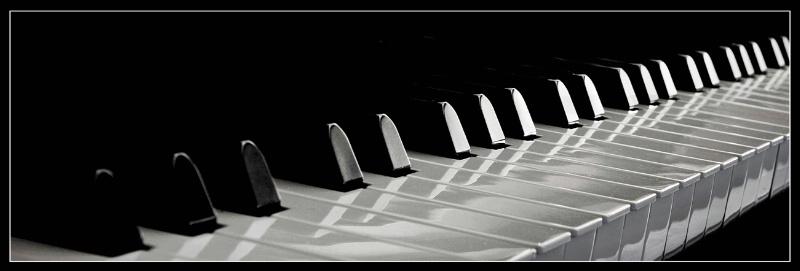 Etude in Black & White