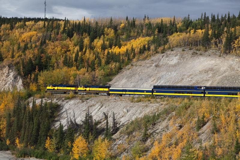 Fairbanks to Denali Train Ride
