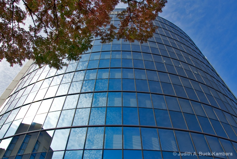 Niigata glass building