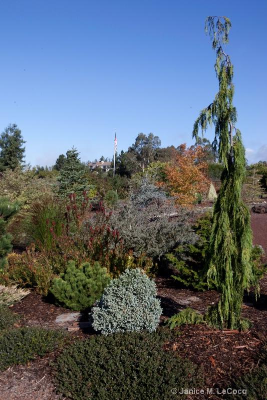 garden design-16