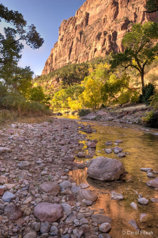 Virgin River Reflections ~ Zion National Park