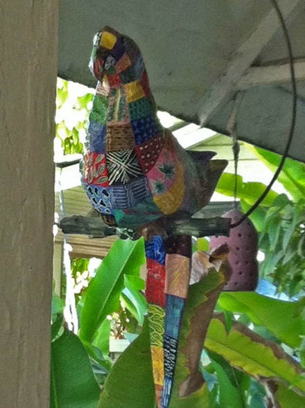 parrot at Hotel Olofson