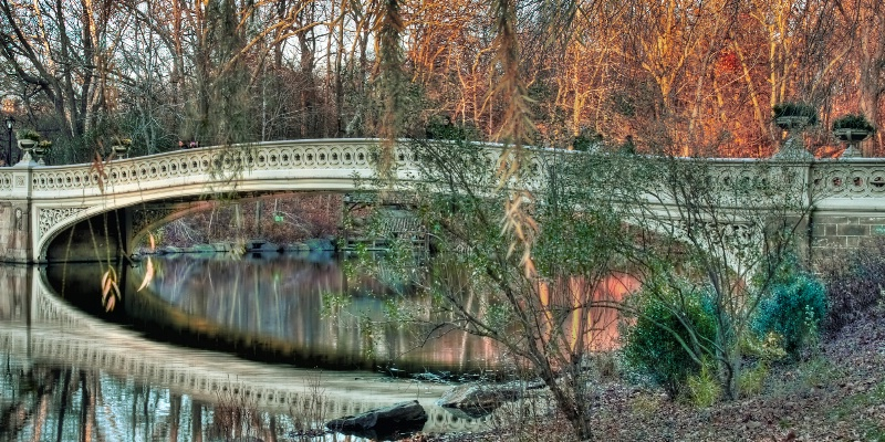 Arched Bridge Reflections