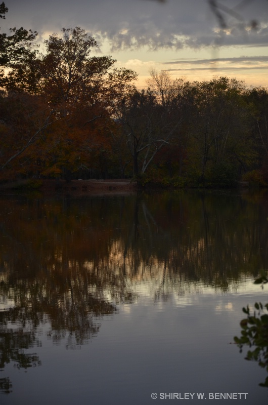 SUN CASTS SHADOWS IN POND AT BILTMORE HOUSE