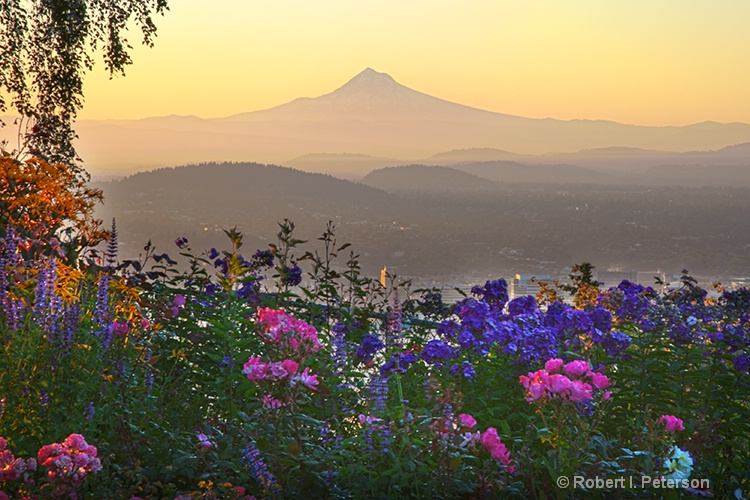 Mt Hood, Portland Oregon