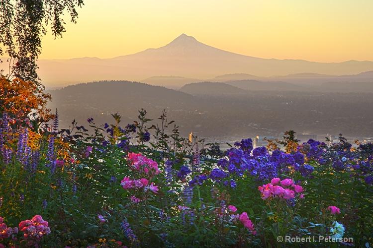Mt Hood, Portland Oregon