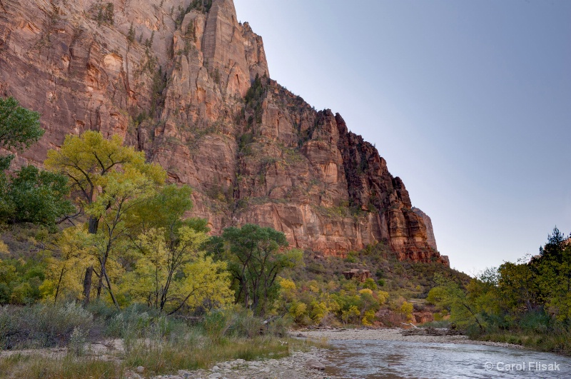 Along the Virgin River ~ Zion National Park