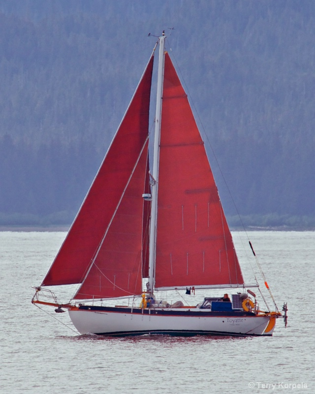 Sailboat in Juneau Alaska