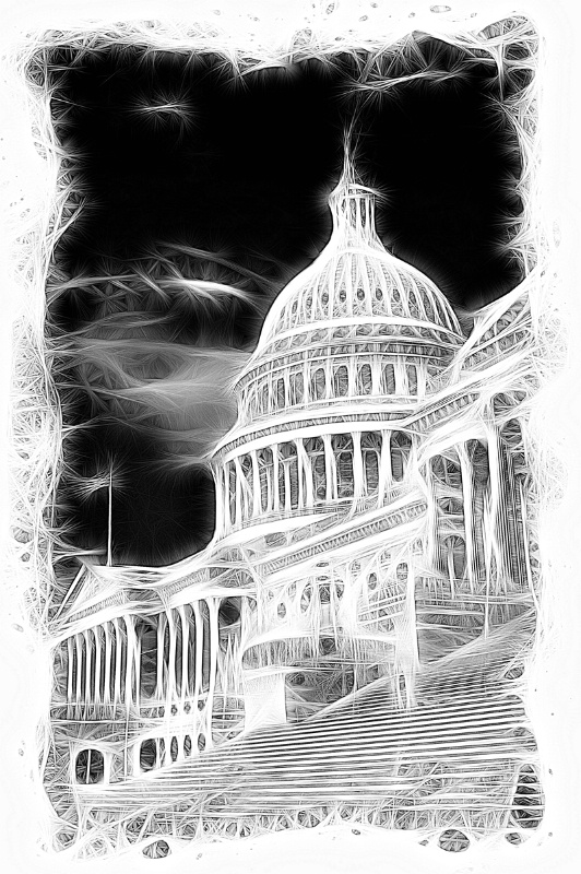 US Capital B&W Artwork