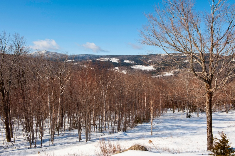 The Western Mountain Region of Maine