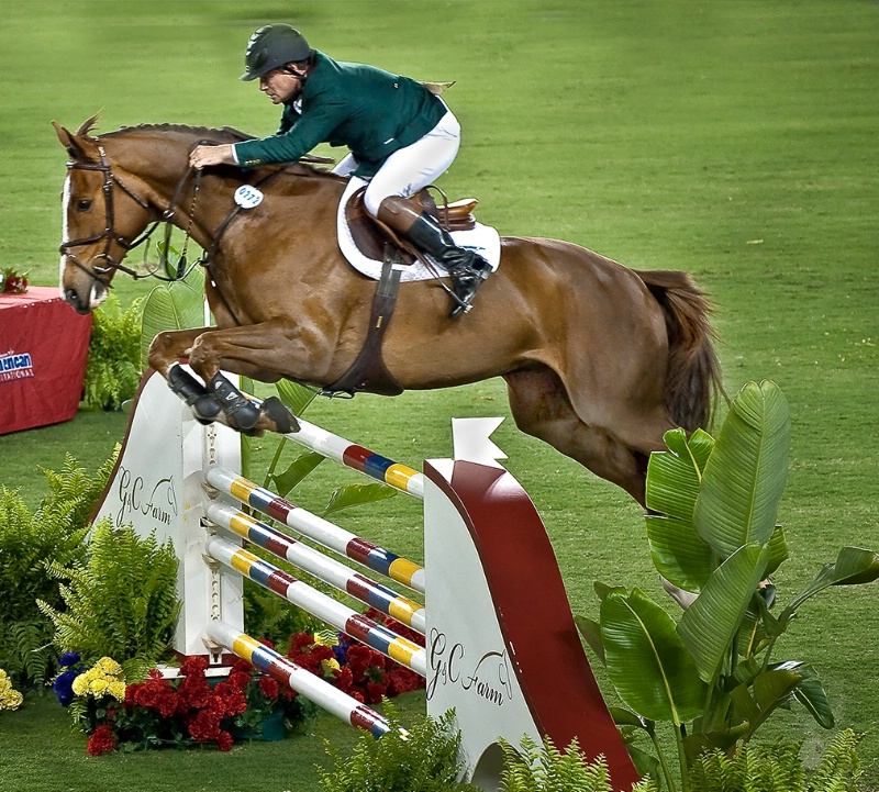 Horse jumping competition, Tampa, Florida