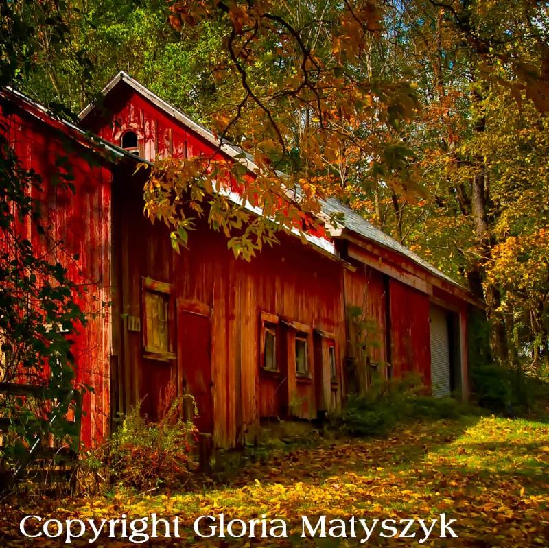 Old barn in autumn, Connecticut