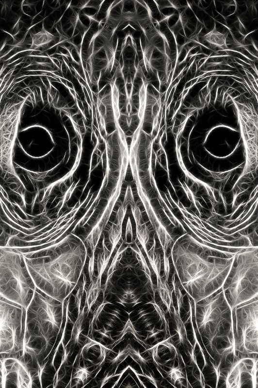 B&W Abstract